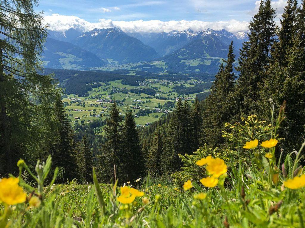Sommerurlaub in Ramsau am Dachstein, Ferchtlhof