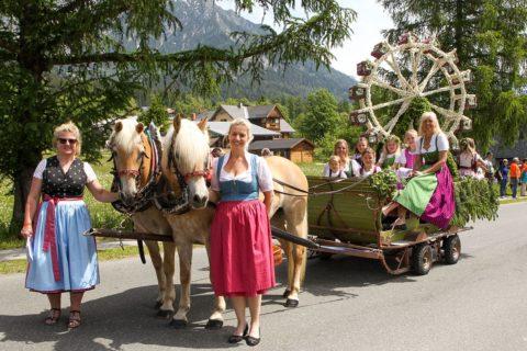 Hofeigene Haflingerzucht, Urlaub am Bauernhof in Ramsau am Dachstein