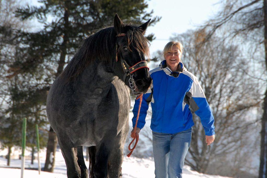 Ferchtlhof Ramsau Pferdeschlittenfahren